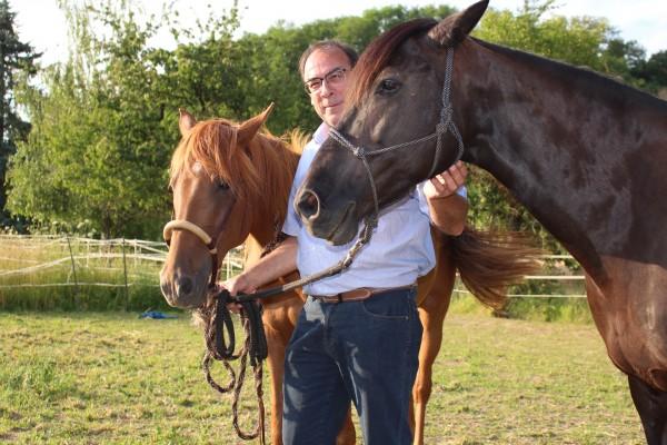 Pferde-038