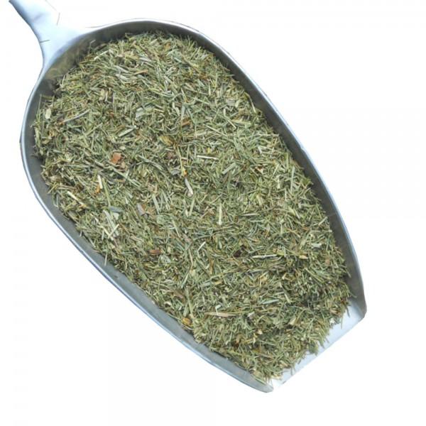 Ackerschachtelhalm (Zinnkraut)